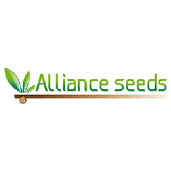 Alliance Seeds